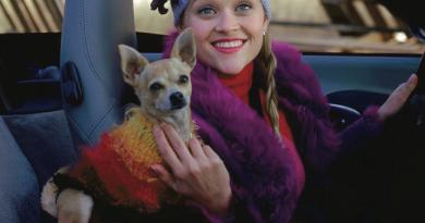 Uma loira divulgou como o Chihuahua é portátil