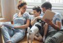 10 dúvidas comuns de quem tem cão